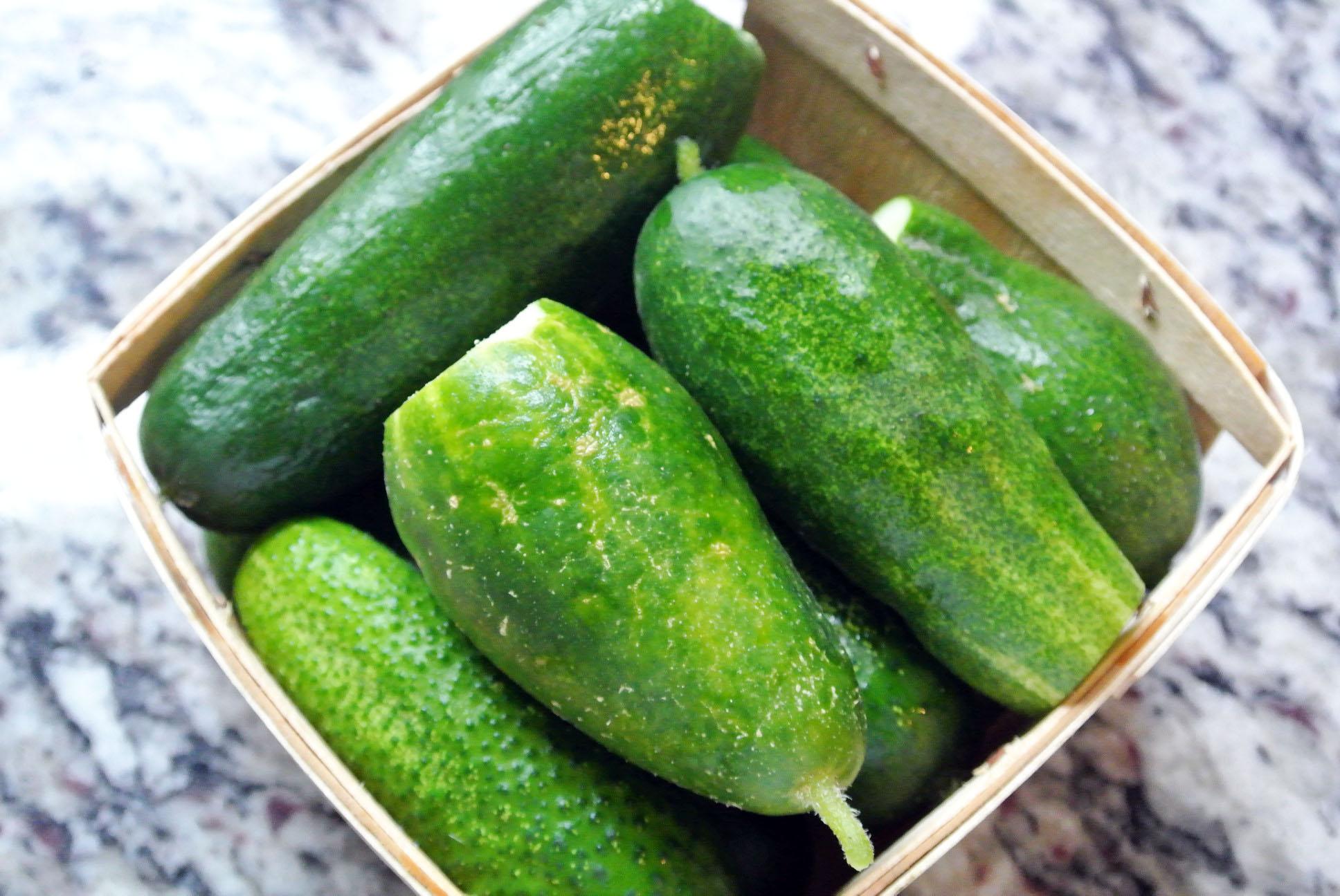 Organic Parisian Pickling Cucumbers