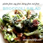 Broccoli Salad: Gluten Free, Soy Free, Dairy Free, Nut Free Recipe