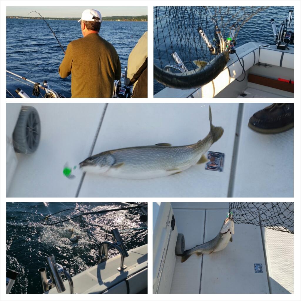 Showtime Charter Fishing Trip