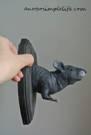 Taxidermy Rat Halloween DIY Rat Finished
