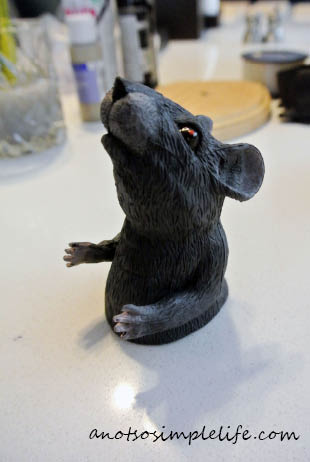 Taxidermy Rat Halloween DIY Rat Head
