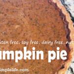 Allergen Free Pumpkin Pie; Gluten Free, Dairy Free, Soy Free, Nut Free Recipe