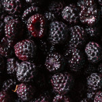 Black Raspberry Preserves (3)
