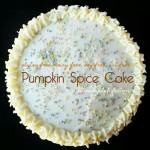 GF Pumpkin Spice Cake Recipe; Gluten Free, Dairy Free, Soy Free, Nut Free Recipe