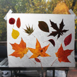 Halloween Activity Day 6: Autumn Leaves Window Hanging