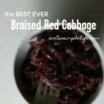 Braised Red Cabbage; Gluten Free, Dairy Free, Soy Free, Nut Free Side Dish Recipe