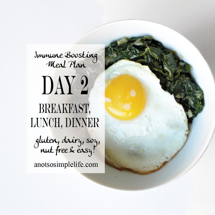 Immune Boosting Mealplan Day 2