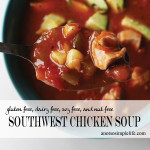 Homemade Southwest Chicken Soup; gluten free, dairy free, soy free, nut free recipe