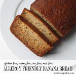 Allergy Friendly Banana Bread; Gluten Free, Dairy Free, Soy Free, Nut Free