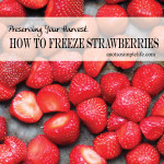 How to Freeze Strawberries; Preserving Your Harvest
